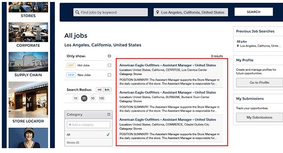 American Eagle Job Application 2